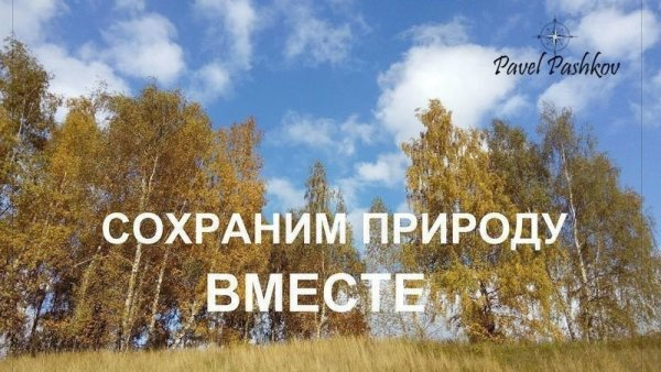 sohranim_prirodu_vmeste.jpg