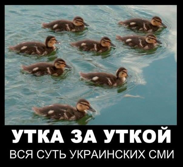 ytka_za_utkoj.jpg